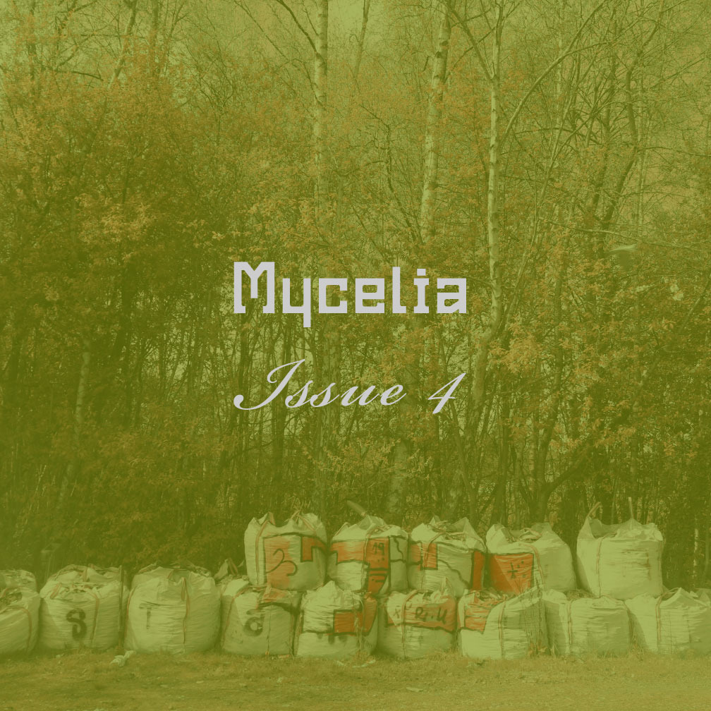An autumnal woodland backdrop with sacks upon sacks of builders material stacked on the ground in front of the trees. The photo is tinted acid green. The text Mycelia, Issue 4, is superimposed in pale grey.